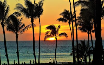 The Maui Habit And Building Trust In Yoursef